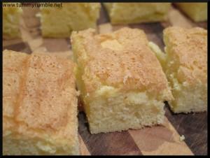 sponge_cut