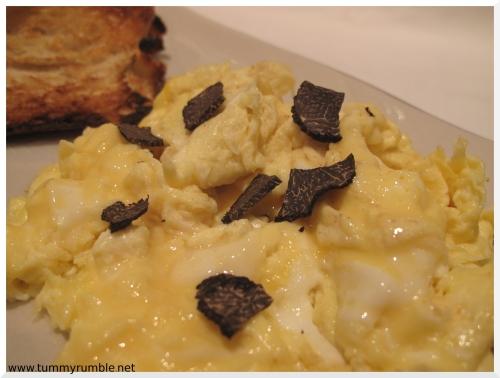 truffle_breaky